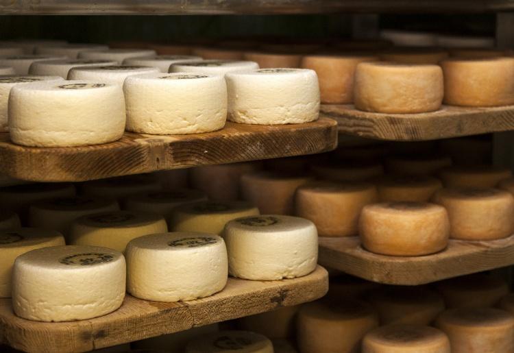 Saint-Martin's dairy