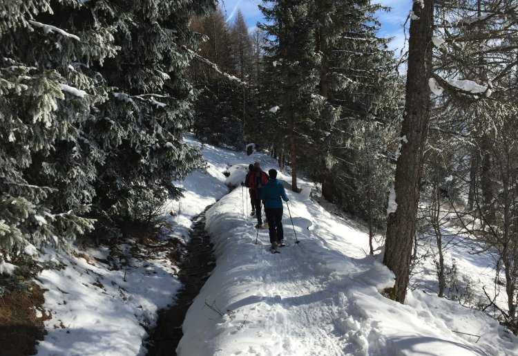 Sentier raquette Suen-Lovegnoz